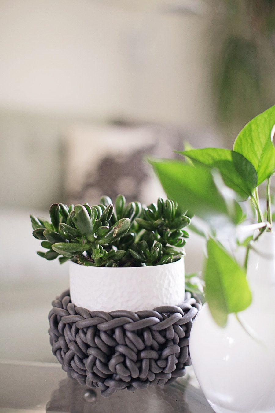 #succulent, #potted-plants, #plants  Photography: Heidi Geldhauser - ourlaboroflovebyheidi.com/ Design & Styling: Christina Loucks - christinaloucks.wordpress.com/  Read More: http://www.stylemepretty.com/living/2013/07/08/christina-loucks-home-tour/