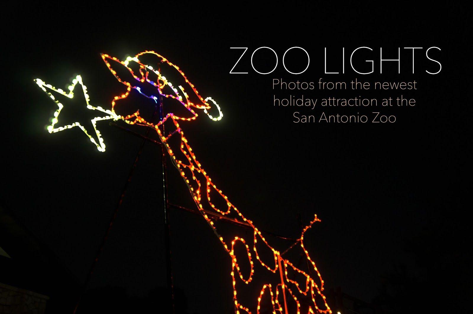 Photos From The San Antonio Zoo, Zoo Lights, Holiday Nights
