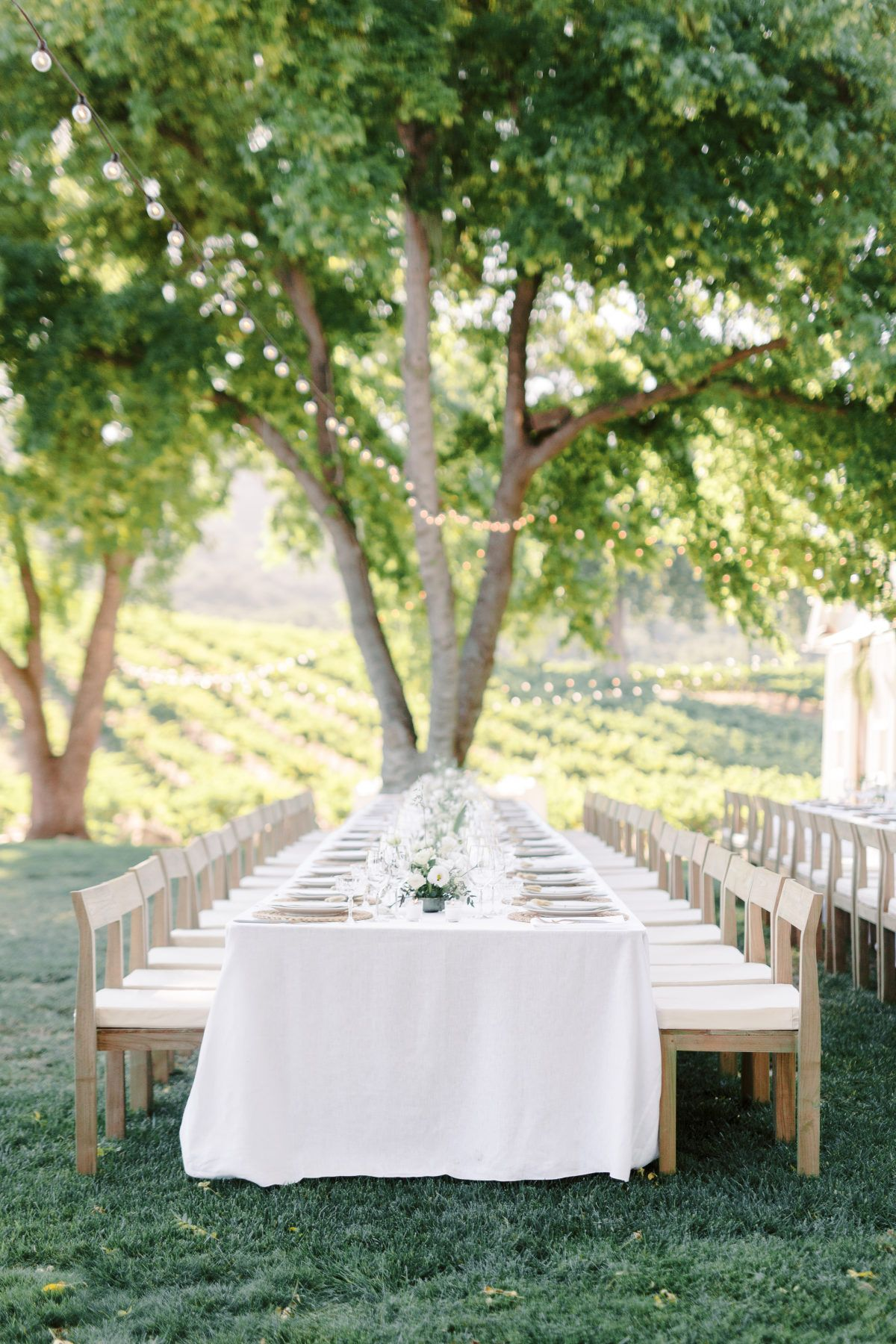 This California Vineyard Wedding Is Proof That Less Is More In 2020 Vineyard Wedding California Vineyards Wine Country Wedding Venues