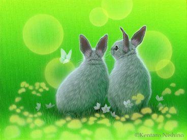 Gallery Small Mammals1 - Art of Kentaro Nishino