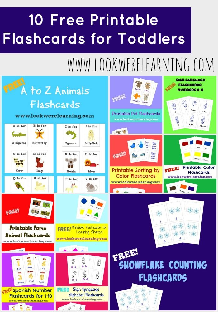 photo about Create Printable Flashcards named 10 Totally free Printable Flashcards for Infants Homeschooling