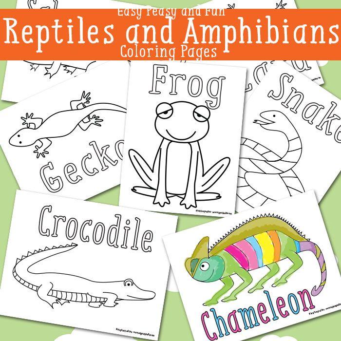 Reptile Coloring Pages Free Printable Reptiles Preschool Reptiles Reptile Party