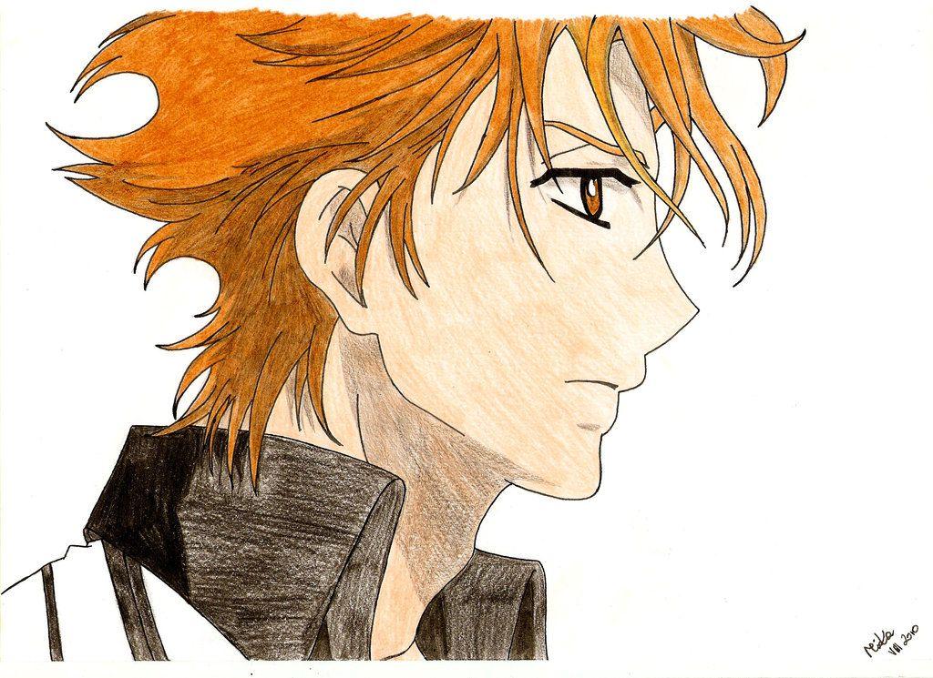 Akatsuki Kain from Vampire Knight Vampire knight