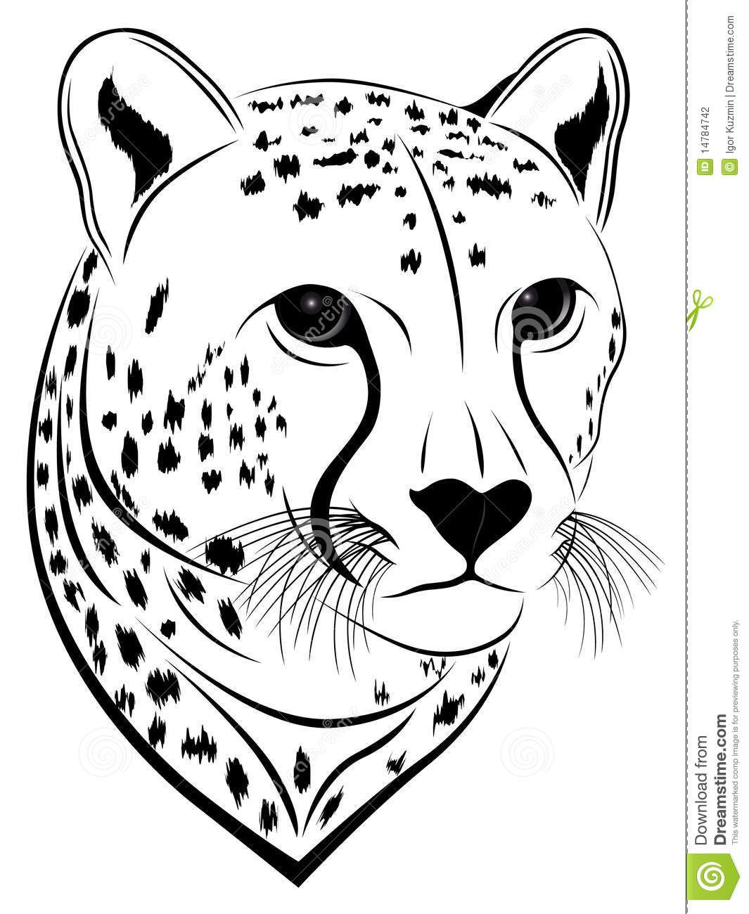Illustration About Cheetah In The Form Of A Tattoo Illustration Of Tattoo Symbol Black 14784742 Cat Face Drawing Cheetah Face Cheetah Print Tattoos