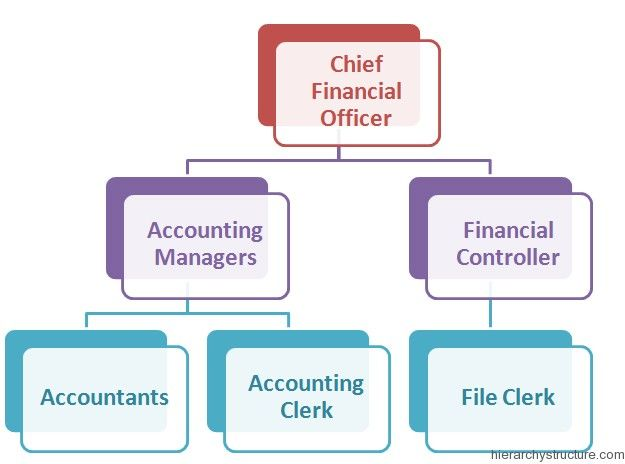 Hierarchy Of Accounting Jobs Accounting Jobs Accounting