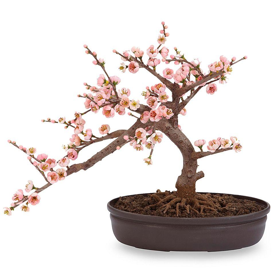Nearly Natural 15 Inch Cherry Blossom Bonsai Tree Bed Bath Beyond Cherry Blossom Bonsai Tree Cherry Blossom Tree Blossom Trees