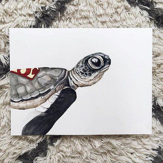 Supermand skildpadde
