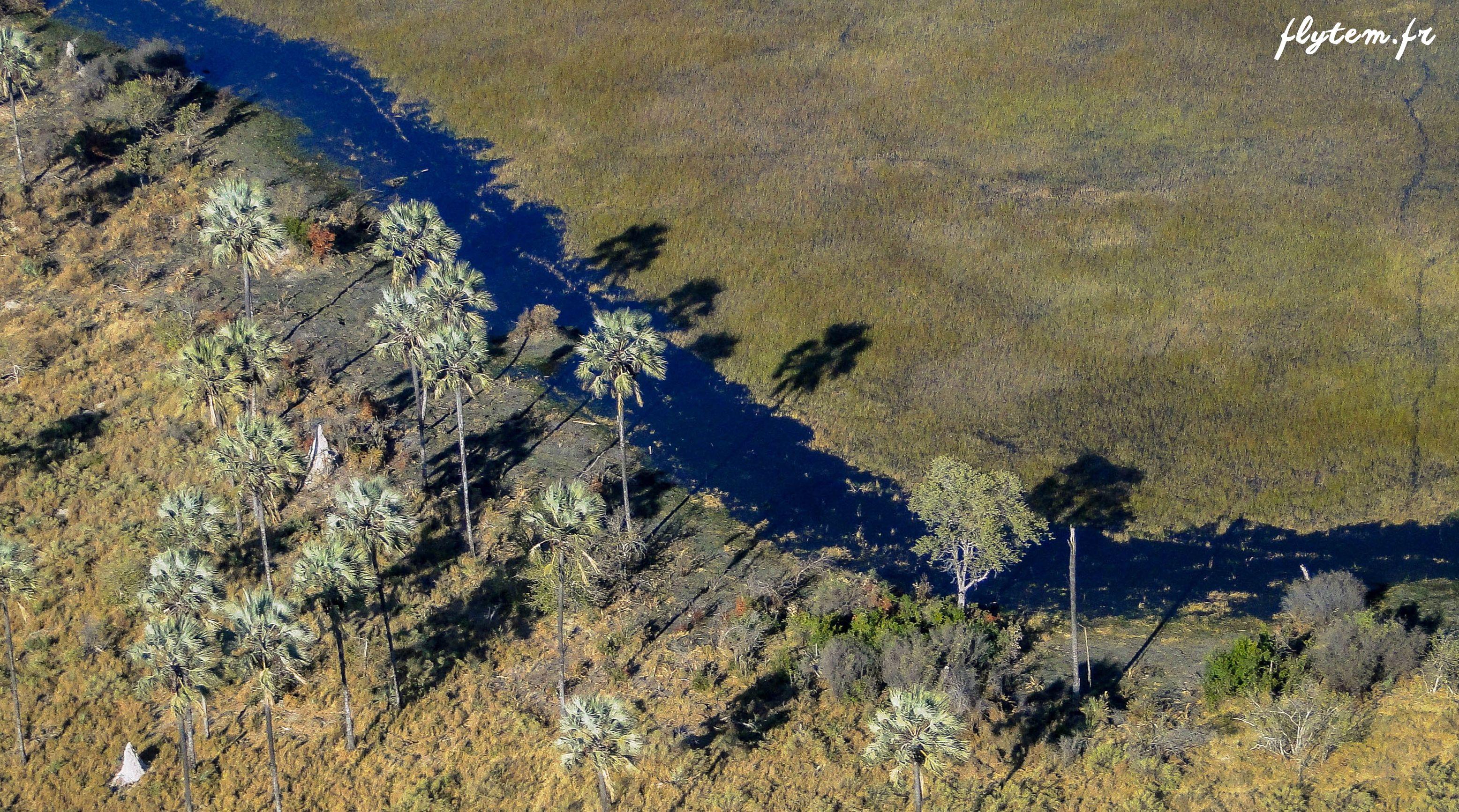 Photo aérienne d'une rivière africaine
