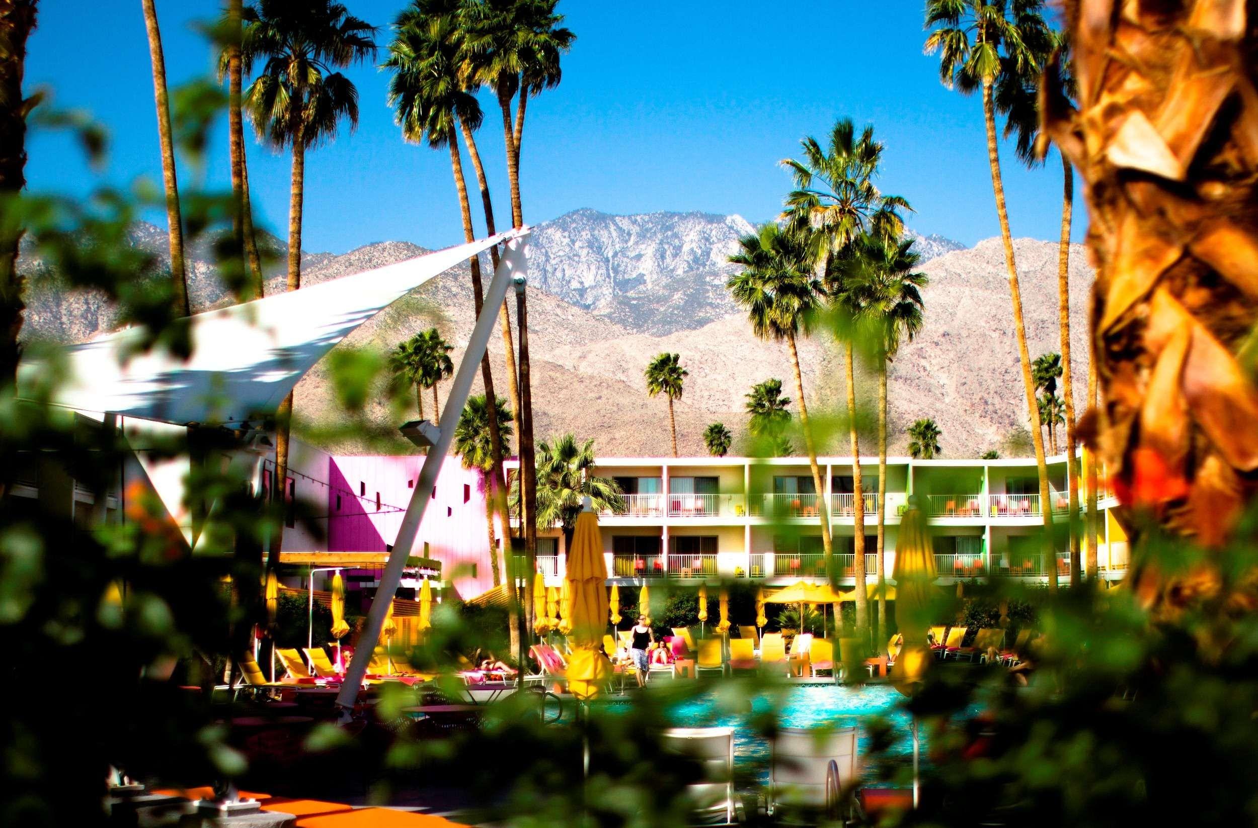 Merveilleux The Saguaro Palm Springs, A Joie De Vivre Hotel In Palm Springs, CA THE