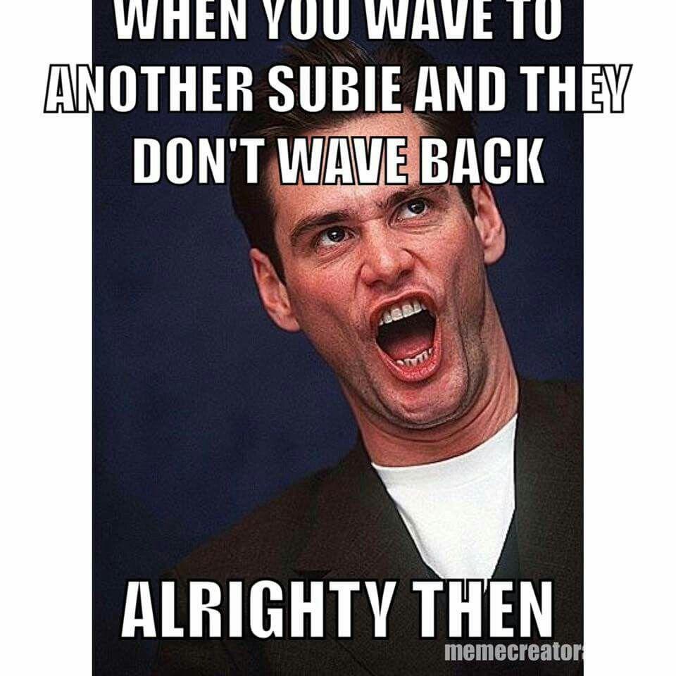 Pin By Karen Thorpe On Meme S Subaru Funnies Jim Carrey Funny Jim Carrey Celebrity Memes