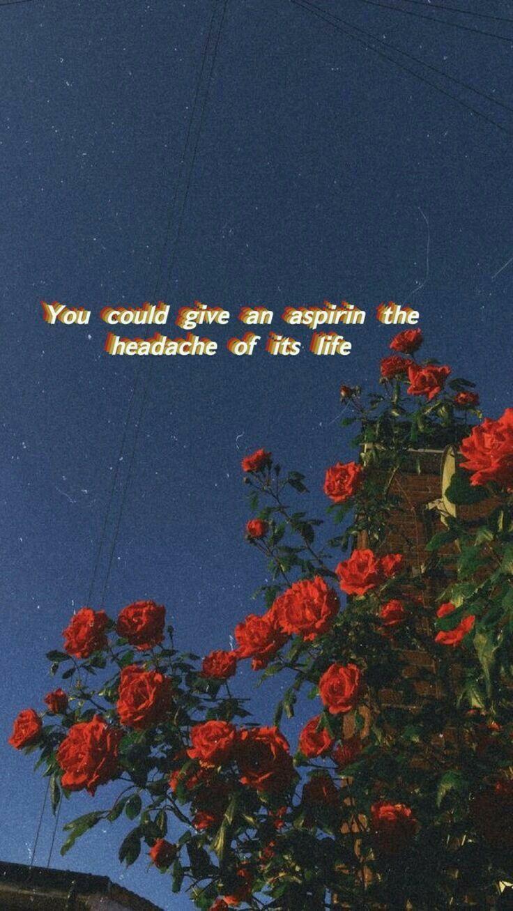 Aesthetic Song Lyrics Wallpaper