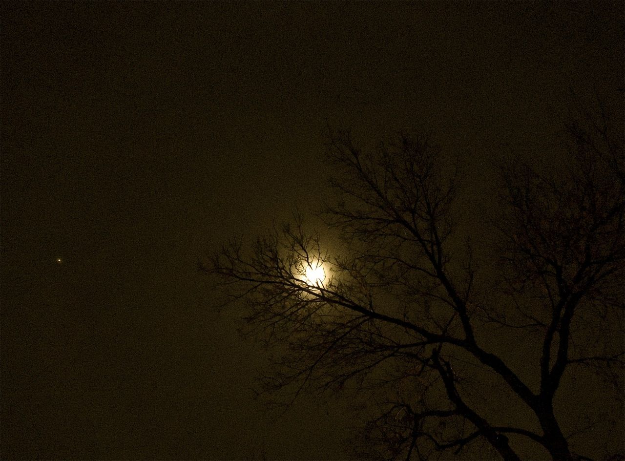 Ash tree nestling a Christmas moon, as Jupiter trails along behind.