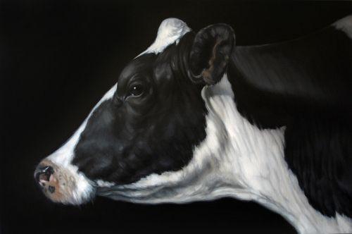 Cow Face Profile | www.pixshark.com - Images Galleries ...