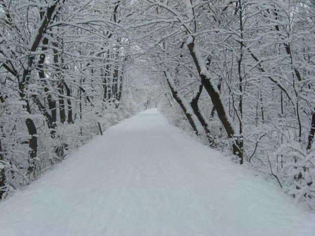 Walking Path in Grand Rapids Michigan