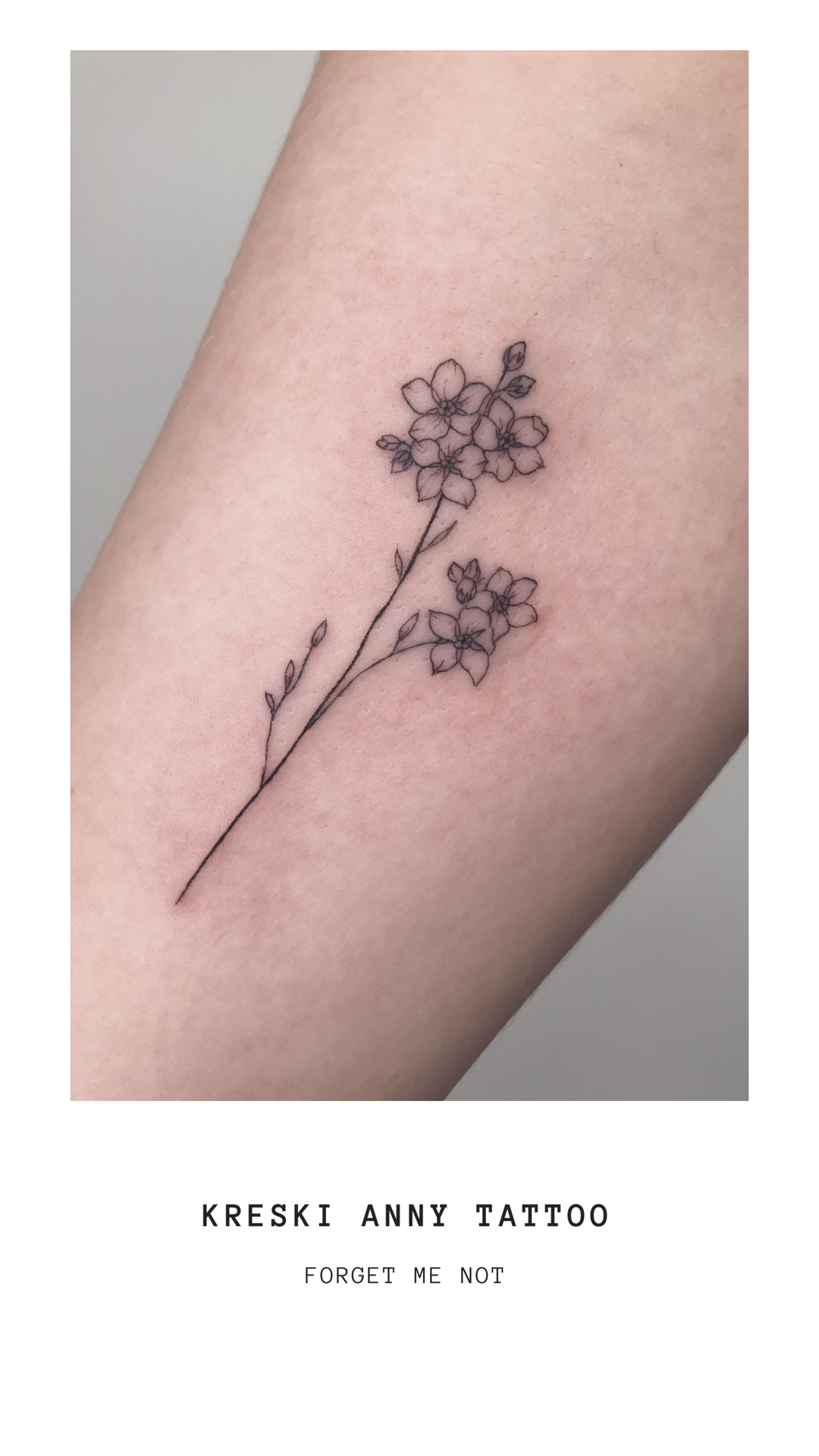 Photo of Fineline tattoo of forget me not flower – Kreski Anny Tattoo