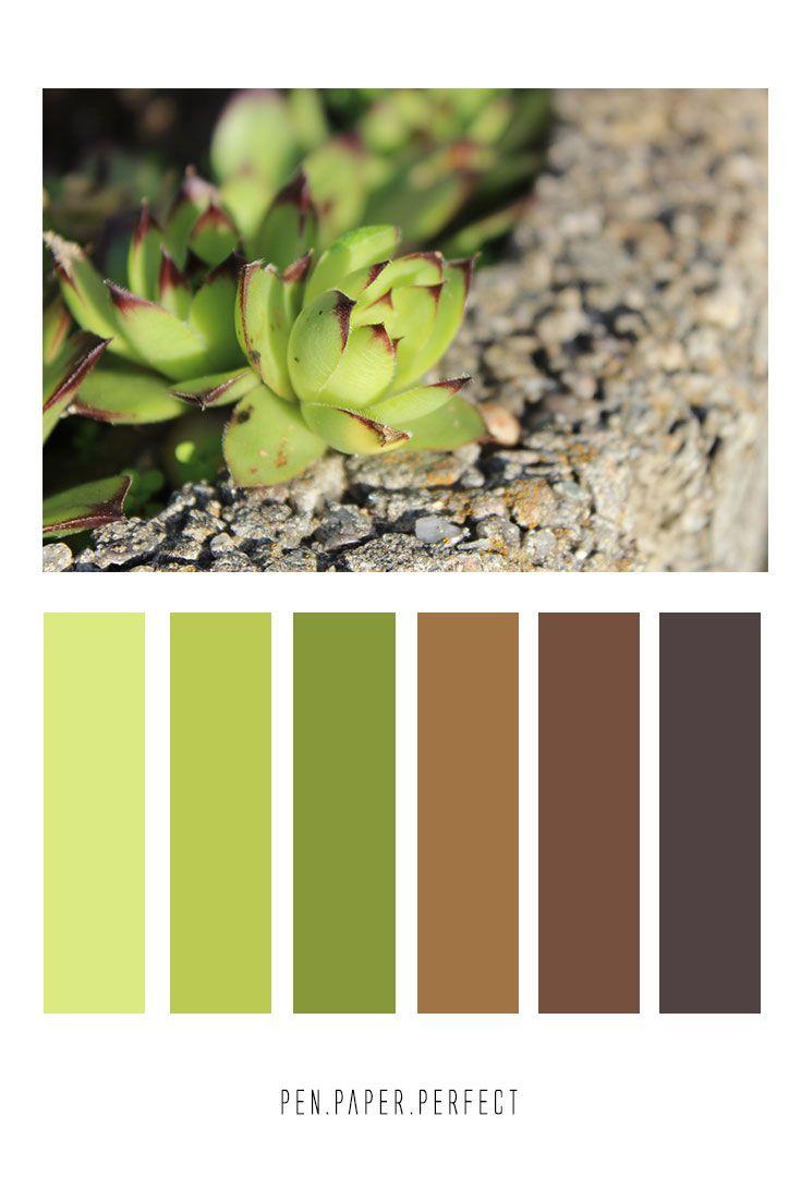 27++ Farben mischen braun und gruen Trends