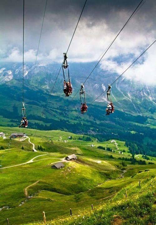 Ziplining in Grindelwald, Switzerland. SIE SIND DAS ESSEN UND WEIR SIND DIE JAEGER