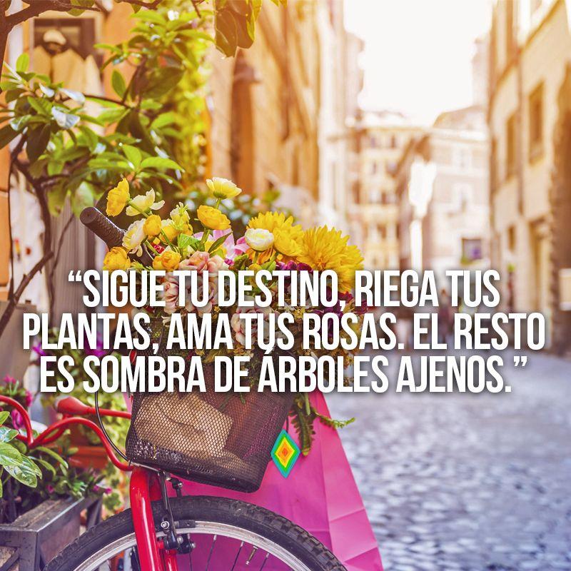 Sigue Tu Destino Riega Tus Plantas Ama Tus Rosas El Resto Es