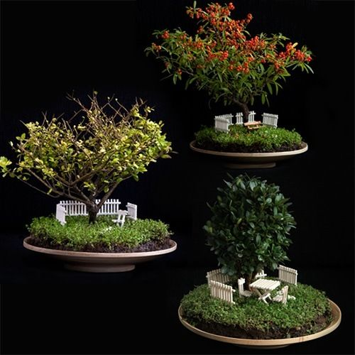 Bag End Bonsai Trayscape Empire. Tiny Hobbit Home Carved ... Photo Gallery