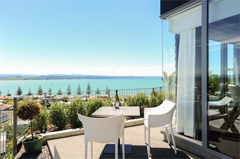 Napier Apartment accommodation Apartment on Roslyn Travel and