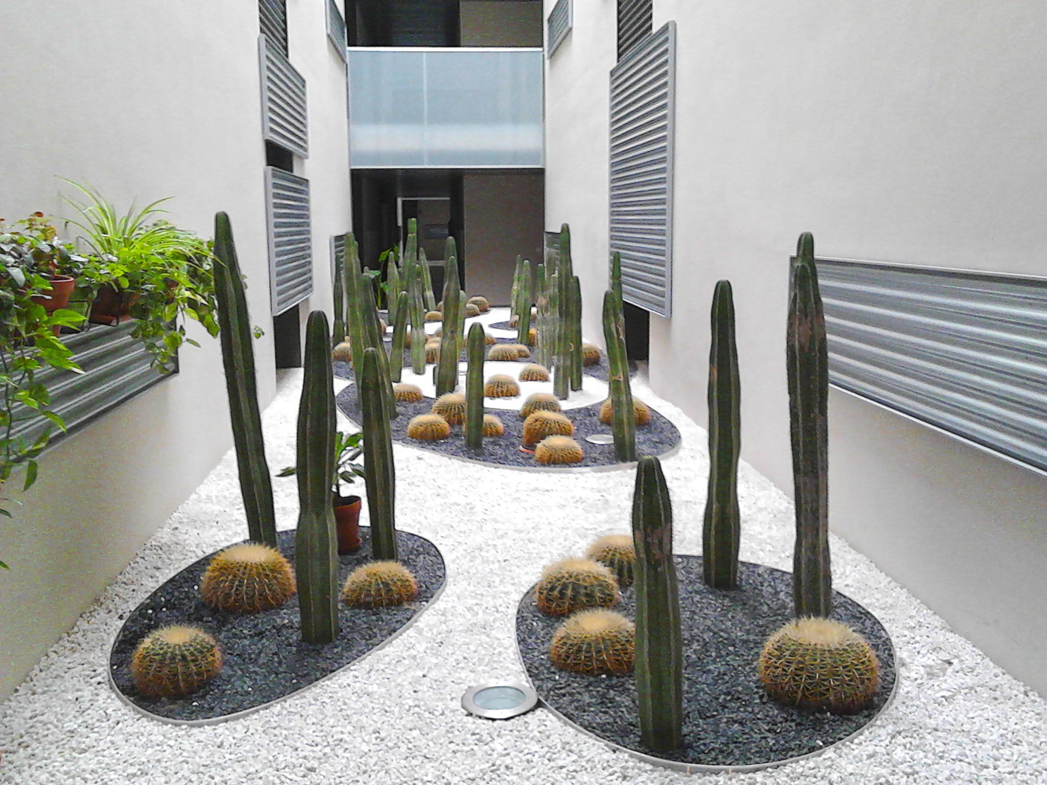 Atractiva composici n con cactus crasas en jardineras for Jardineras de piedra natural