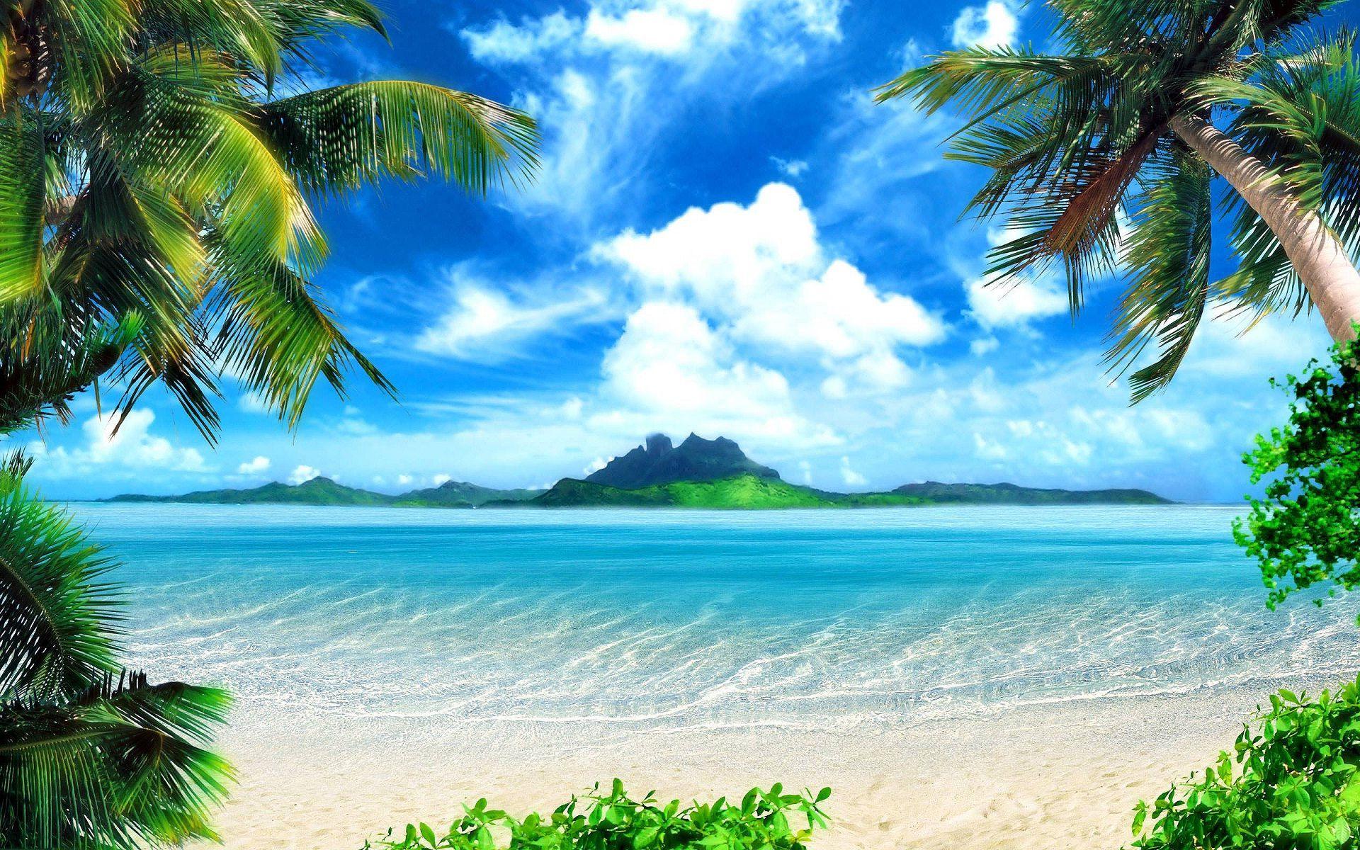 Do Vector Tracing Or Vector Art Beautiful Nature Wallpaper Beautiful Beach Pictures Beach Wallpaper