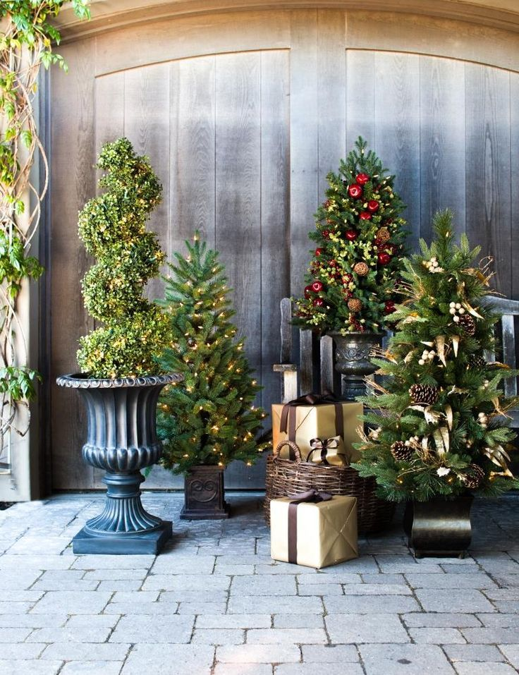 30 best images about Topiary Trees on Pinterest | Wedding … outdoor christmas tree
