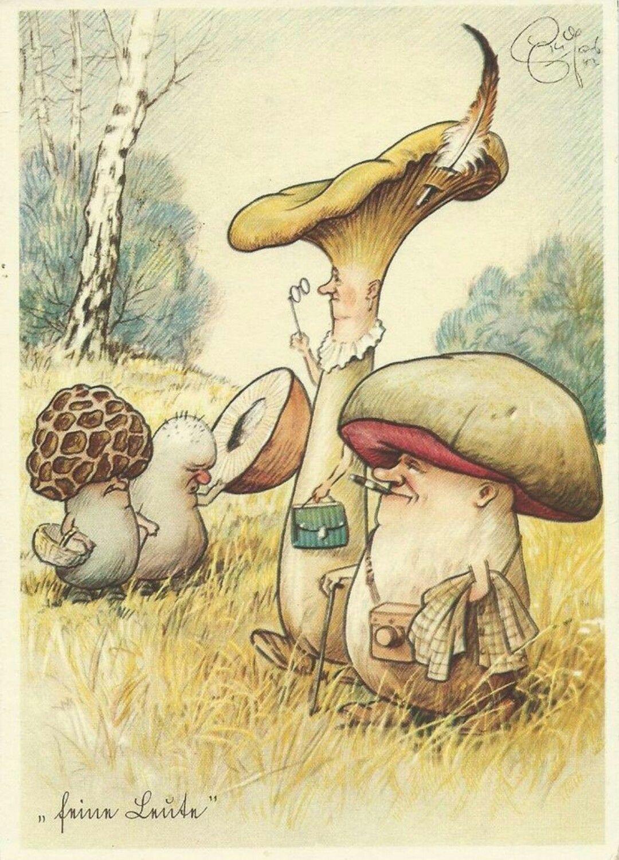 увидев смешные картинки про грибы картинки создания эффектного образа