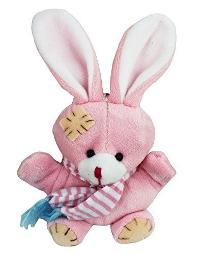 "5"" Love Mate Recordable - Pink Bunny Stuffed Plush Animal -Say & Record Message Love mate http://www.amazon.com/dp/B00MNS09IU/ref=cm_sw_r_pi_dp_zKNpvb1PERPF3"