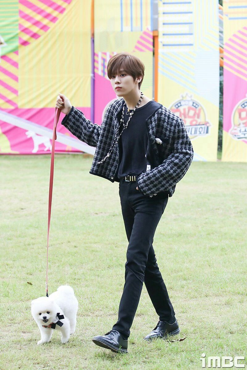 Kimwooseok With His Dog On Mbc 2020 Idol Championship Kim Guys Catboy
