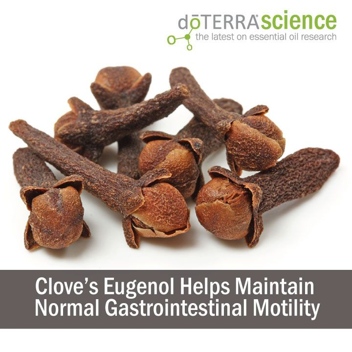 clove 39 s eugenol helps maintain normal gastrointestinal motility doterra science pinterest. Black Bedroom Furniture Sets. Home Design Ideas