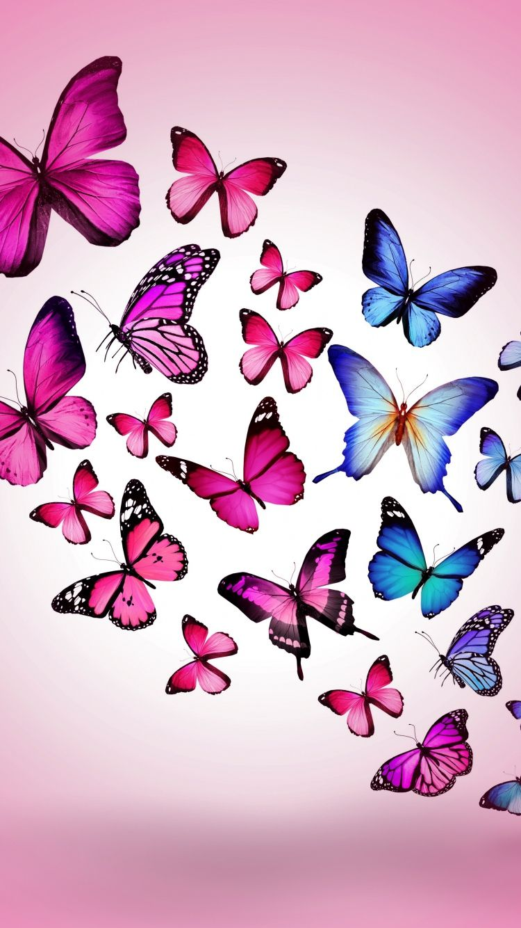 750×1334 Wallpaper Butterfly Drawing Flying Colorful Background  -> Borboletas Rosa Desenho