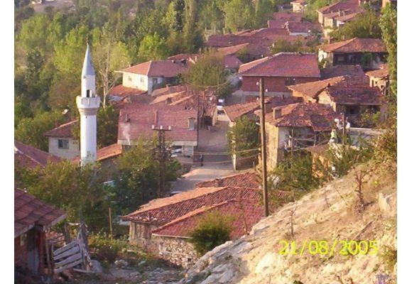 http://ayancuk.com/koy-6357-Firuzkoy-Koyu-Orhaneli-Bursa.html  Firuzköy Köyü; Bursa ilinin Orhaneli ilçesine bağlı bir köydür.