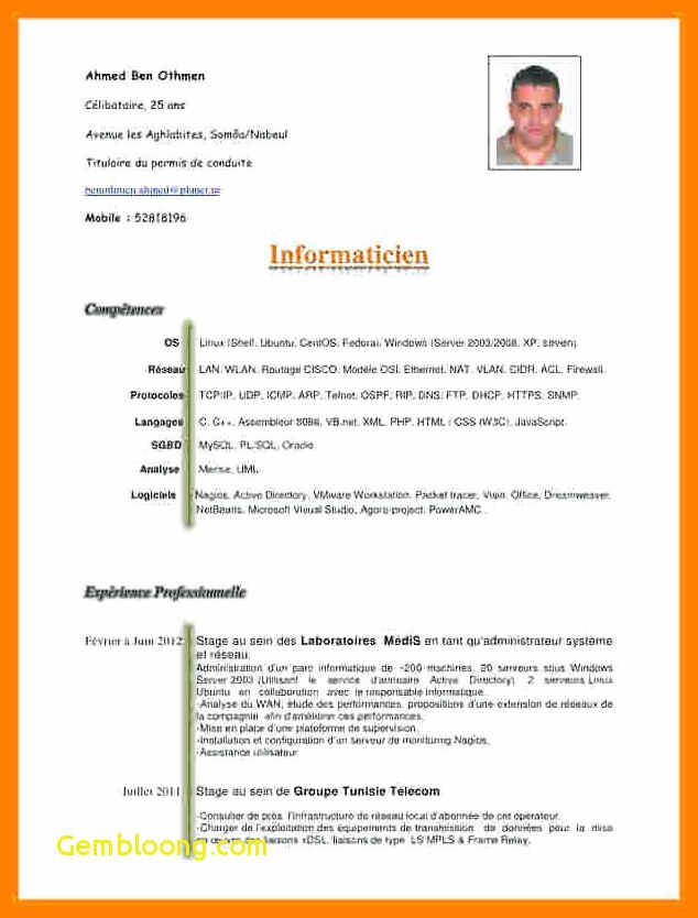 cv word document format in 2020 Cv words, Curriculum
