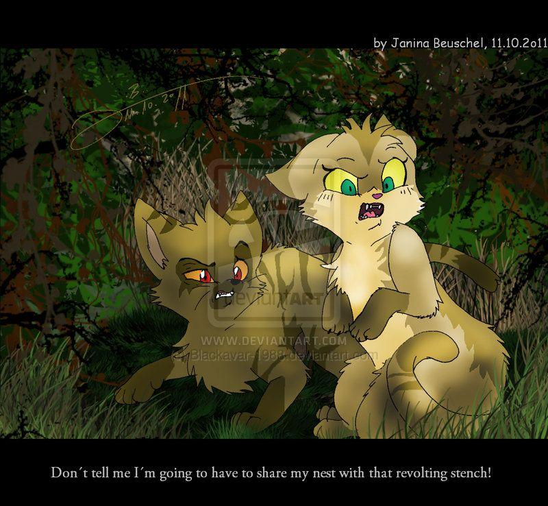 Sandstorm talking about Firestar's kittypet stench when he