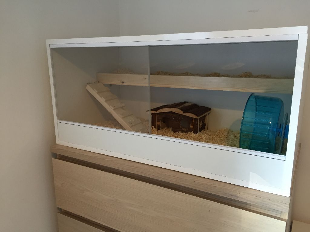 Luxury Handmade Hamster Cage On Gumtree I Have For Sale This Beautiful Handmade Hamster Cage Which Is Also Be Sui Hamster Cage Hamster Cages Hamster