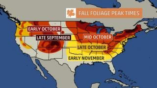 Photos And Videos 10 Day Weather Forecast The Weather Channel Fall Foliage