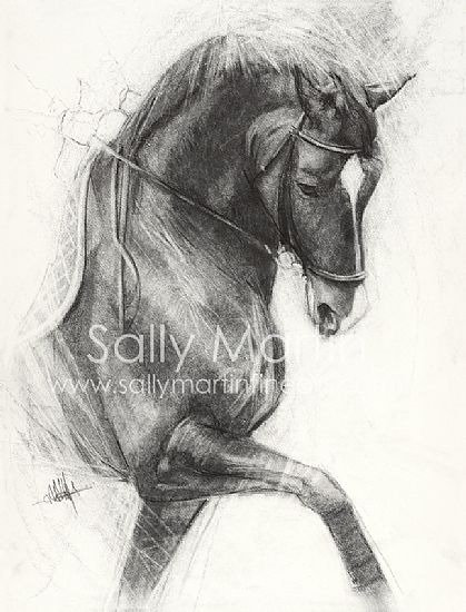 Valegro (Large Print) on Paper 30inch x 22inch £350.00 ...