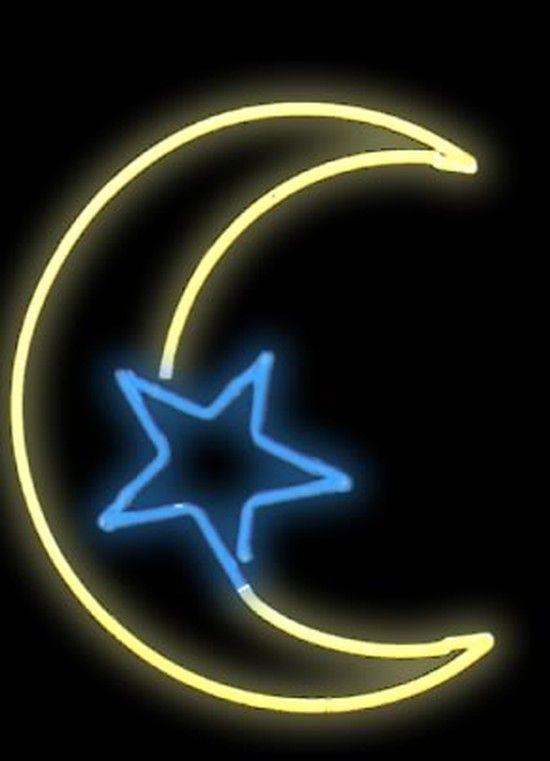 Moon Star Neon Light