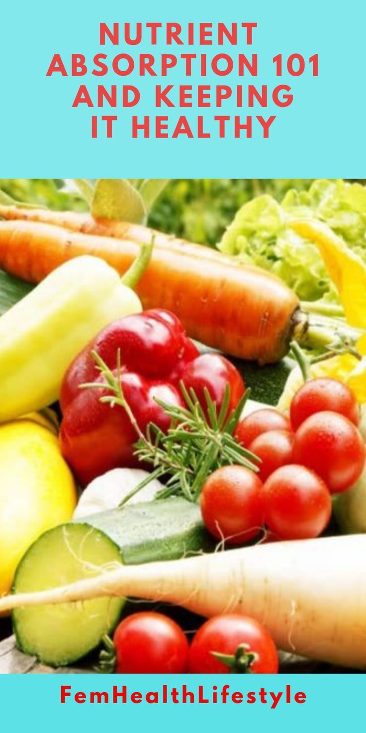 Nutrient Absorption 101 And Keeping It Healthy - FemHealthLifestyle