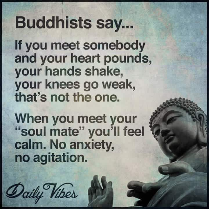 Pin By Tina Miller On Quotes Quotes Love Quotes Buddhist Quotes Adorable Buddha Quotes About Love