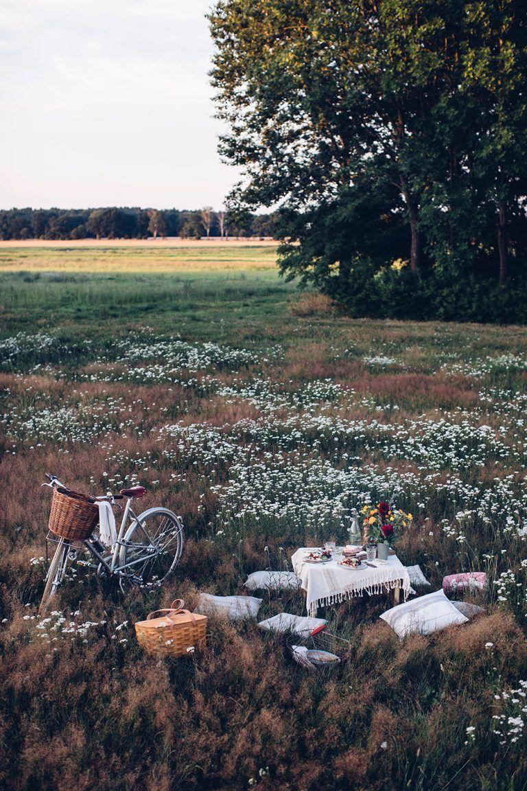Sommerpicknick auf dem Land mit Le Rustique