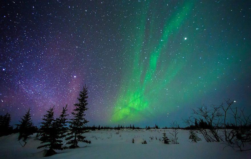 Ok Google Northern Lights