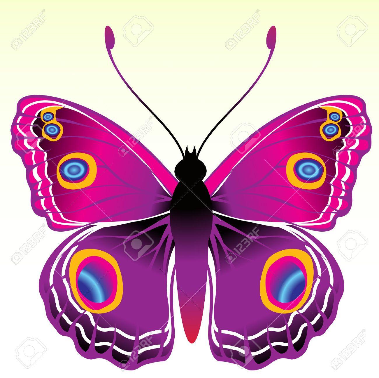 mariposas de colores buscar con google mariposas