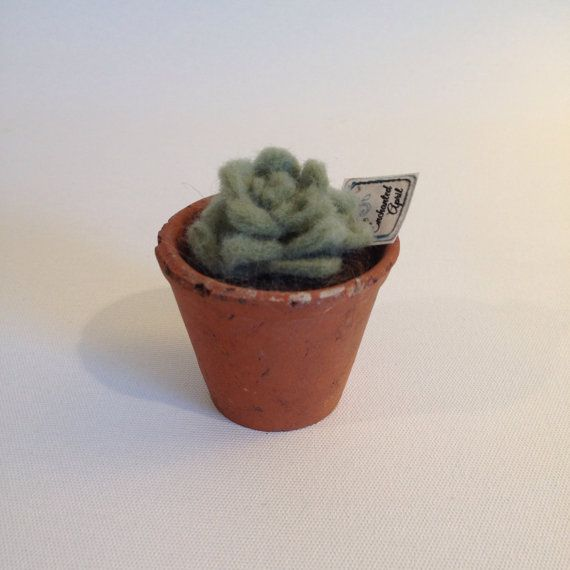 Needle Felted Succulent in Vintage Terracotta by OneEnchantedApril, $20.00