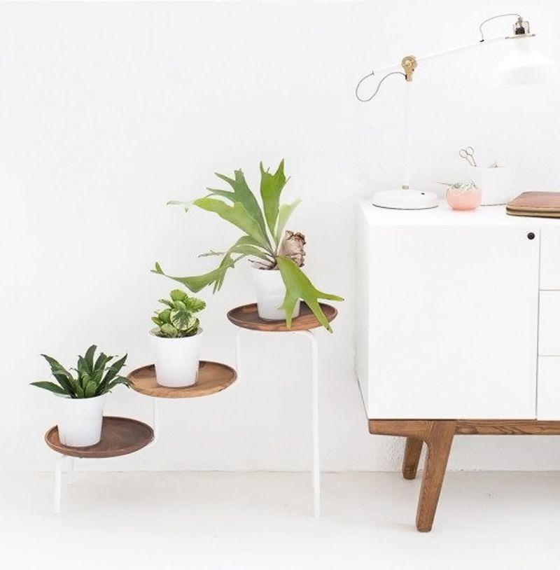 l 39 objet de convoitise l 39 tag re plantes plantes. Black Bedroom Furniture Sets. Home Design Ideas