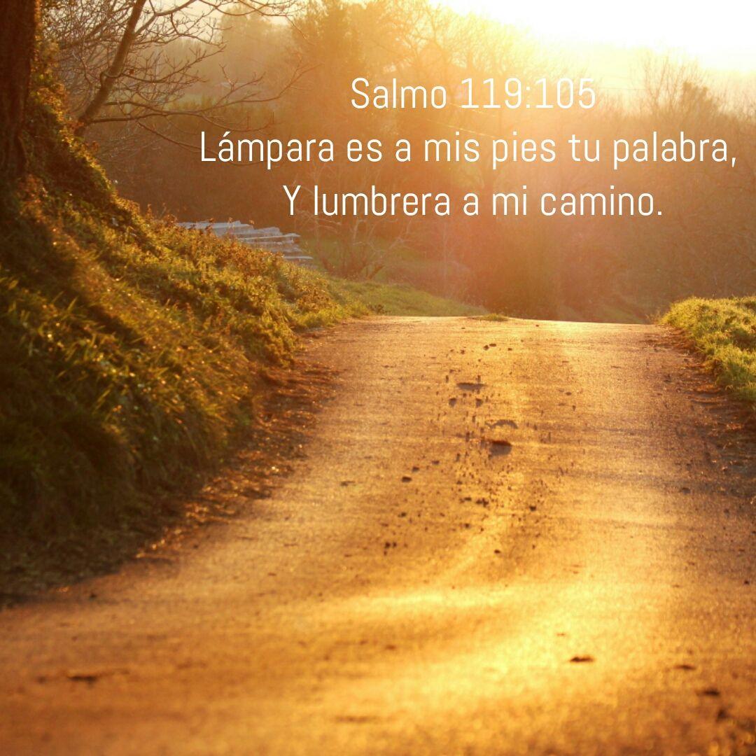 Salmo 119:105 Lámpara es a mis pies tu palabra, Y lumbrera a mi ...
