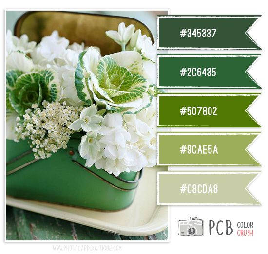 wedding ideas with pallets color crush palette 183 1 11 2013 card color inspiration 28031