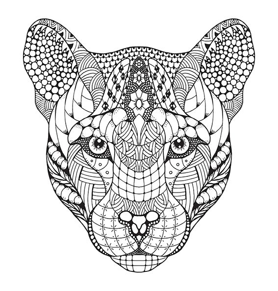 Zentangle stylized mountain lion, cougar. Freehand. on Behance ...