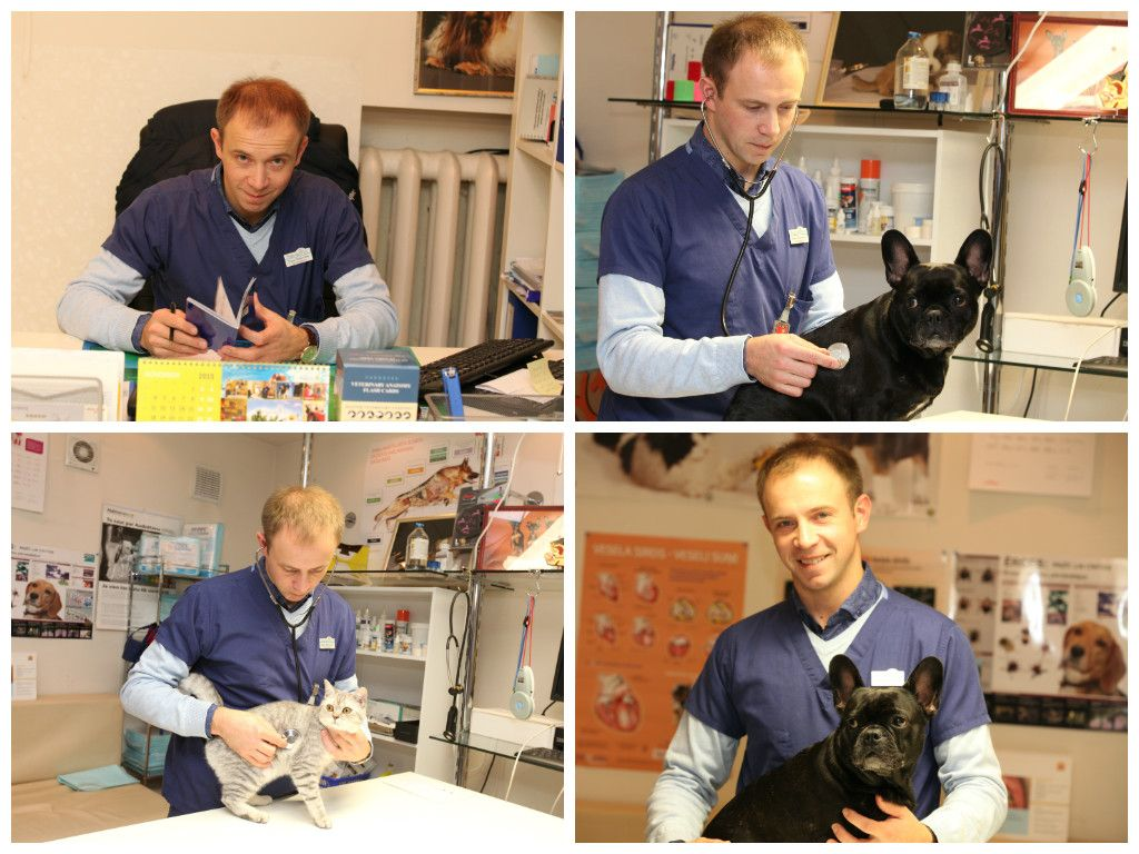 Franceska Vet Veterinara Klinika Riga Vets Talk Show Riga